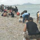 Người dân đổ xô đi nhặt cá chết dạt trắng bờ biển