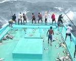 Kinh điển: 1 phút câu gần 10 con cá