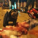 Hà Nội: Công an truy tìm xe khách tông chết một nam thanh niên rồi bỏ chạy