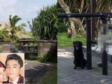 Khu vực cưới của Lâm Tâm Như dùng chó nghiệp vụ để bảo vệ