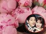 Song Joong Ki khiến fans trầm trồ khi làm điều ngọt ngào với Song Hye Kyo