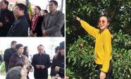 Tin sao Việt 26/2/2018: Nghệ sĩ Việt tiễn biệt diễn viên Tuệ Minh, Tăng Thanh Hà rạng rỡ giữa tin đồn mang thai lần ba