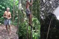 Ngạc nhiên với tài trèo cây của ông cụ ngoài 70