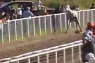 Những cái kết thảm hại trên đường đua ngựa