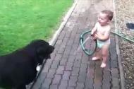 Bé cười giòn tan khi xịt nước vào chó cưng