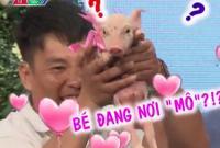 Bạn muốn hẹn hò: Chuyện chưa từng xảy ra - mang lợn đi chinh phục bạn gái