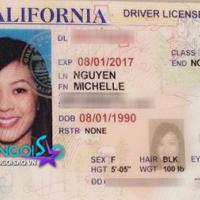 Tủ hồ sơ sao Việt (P22): Hoa hậu Michelle Nguyễn