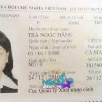 Tủ hồ sơ sao Việt (P26): Trà Ngọc Hằng
