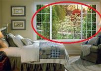 Trang trí cửa sổ ngôi nhà hợp phong thủy để 'nhân đôi' tài lộc tài vượng cả năm