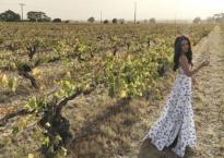 Ngắm trang trại rượu nho hoành tráng của 'Phan Kim Liên' Ôn Bích Hà tại Úc