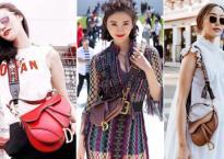 Hàng loạt sao và tín đồ thời trang mê mẩn chiếc túi yên ngựa của Dior