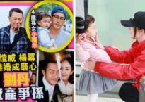 Lo sợ Dương Mịch giành quyền nuôi con, gia đình Lưu Khải Uy nhanh chóng có biện pháp chống đỡ