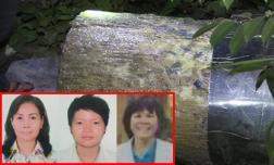 Thêm lời khai lạnh người của nhóm phụ nữ giết người giấu xác trong bê tông