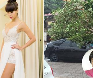 Tin sao Việt mới ngày 28/7: Hà Anh thử váy cưới, xe của Ngọc Khuê bị cây đổ trúng do bão