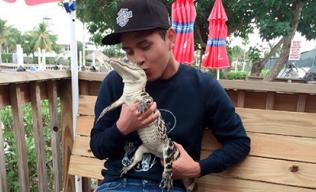 Hồ Quang Hiếu thản nhiên hôn cá sấu