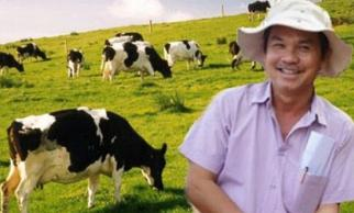 Bầu Đức 'mỉm cười' với đống phân bò