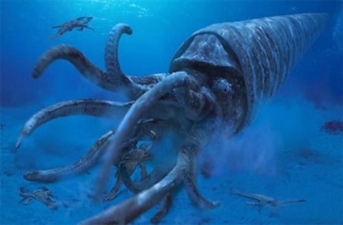 Cameroceras, động vật thân mềm, được coi là một trong những sát thủ biển  lớn nhất sống ở kỷ đại cổ sinh. Nó sống ở dưới biển sâu và đợi con mồi. Loài  ...