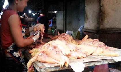 Thịt gà tồn cuối chợ đầu mối đi về đâu?