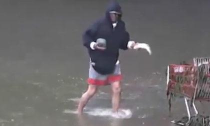 Ngoạn mục màn bắt cá bằng đá