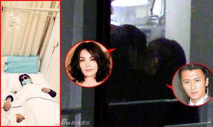 Trương Bá Chi nhập viện trước tin Tạ Đình Phong đắm đuối với tình cũ