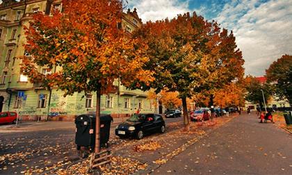 7 điểm đến không thể bở lỡ cho chuyến du lịch mùa thu