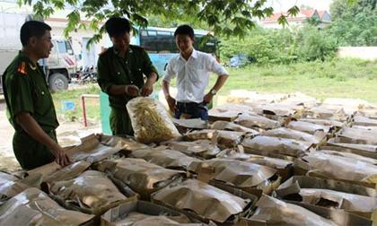 Bắt giữ hơn 1 tấn bim bim không rõ nguồn gốc