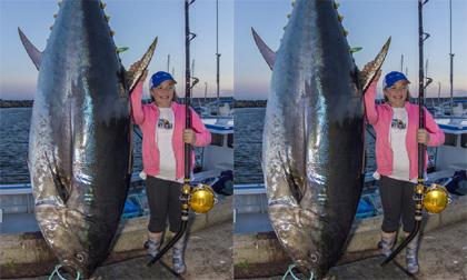 Cô bé 12 tuổi bắt gọn cá ngừ khổng lồ nặng 280 kg