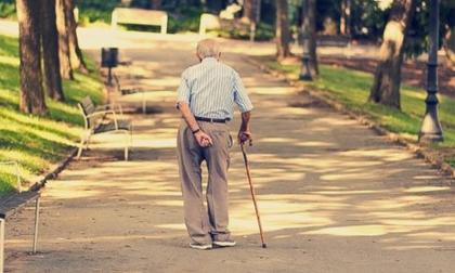 Cụ ông 85 tuổi bị phạt vì... đi bộ sang đường quá chậm