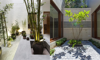 Tạo không gian sống sinh thái cho nhà phố với giếng trời