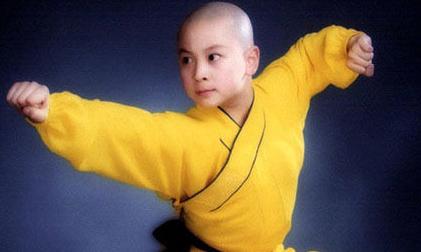 Thích Tiểu Long, sao hoa ngữ, ngôi sao võ thuật
