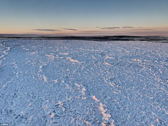 Băng vảy rồng - hiện tượng tự nhiên siêu hiếm lại xuất hiện tại Nam Cực sau 10 năm mất tích - Ảnh 2.