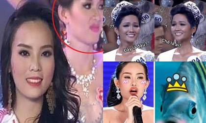 H'Hen Nie,Hoa hậu Hoàn vũ Việt Nam 2017,H'Hen Niê đăng quang