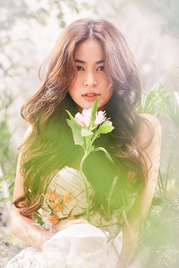 Hoàng Thùy Linh, sao Việt