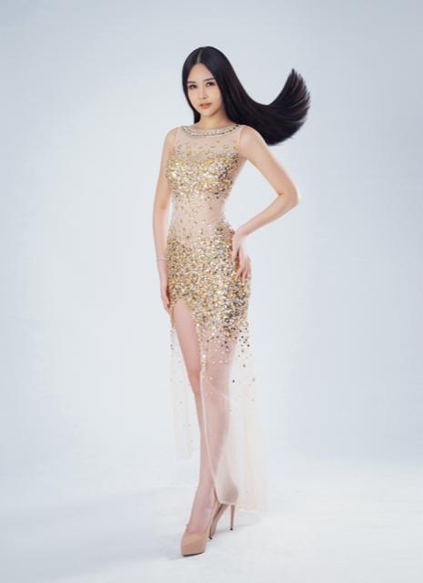 Ngân Anh chính thức trả về lý do tham dự Miss Intercontinental 2018