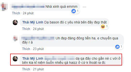 Thái Mỹ Linh, nhà Thái Mỹ Linh