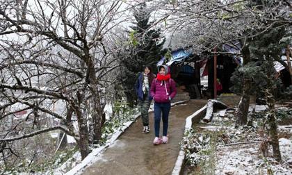 Không khí lạnh tràn về sớm, mùa đông năm 2019 diễn biến thế nào?