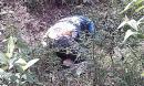 Nữ SV chết trong rừng: Hé lộ nguyên nhân tử vong