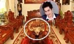 Truy nguồn gốc da hổ, đầu bò trong nhà diễn viên Tùng Lâm
