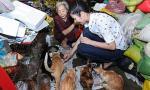 Ngọc Hân đến thăm bà cụ 80 tuổi cưu mang đàn mèo bị bỏ rơi