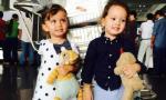 Cặp sinh đôi nhà Hồng Nhung mải mê ôm gấu tại sân bay