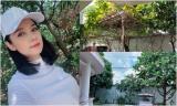 Khu vườn rợp bóng cây xanh trong ngôi nhà ngoại thành của Việt Trinh