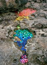Những tác phẩm nghệ thuật từ rác đẹp ngỡ ngàng