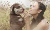 Tinna Tình khóc ngất khi bị mất trộm chó