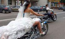 Cô dâu năm 2014
