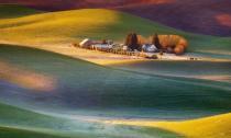 Ngắm những sắc màu rực rỡ trên đồng cỏ Mỹ