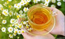 3 loại hoa ngay trong vườn giúp kiểm soát huyết áp cực tốt