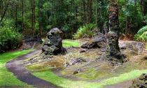 Khám phá rừng cây nham thạch độc đáo ở Hawaii