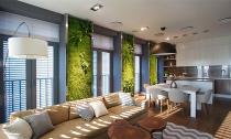 Độc đáo căn hộ có 3 'mảnh vườn'... trên tường