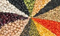 Top 4 loại hạt là thần dược sức khỏe bạn nên ăn mỗi ngày
