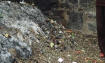 Hoang mang vụ thi thể hai bé sơ sinh bị bỏ rơi trong chùa